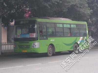 喜欢遂宁公交车的来了图片