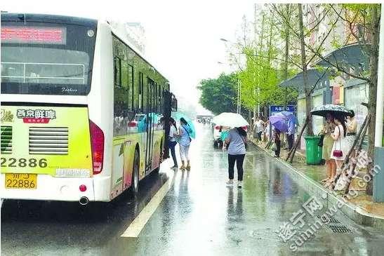 遂宁公交站台问题多 部分路线指示不明 有些车辆不进站图片
