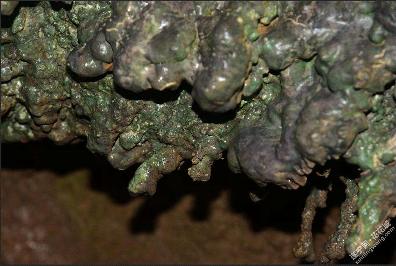 岩腔里还形成了石钟乳.jpg