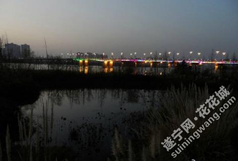 QQ图片20170111104605.png