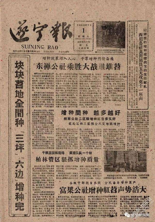 《遂宁报》第1版报道各公社增种红苕.jpg